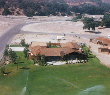 <span>1988</span> 